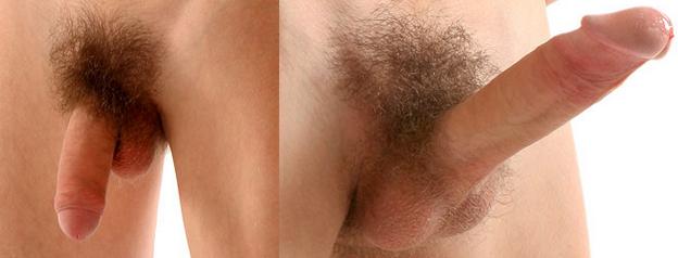 erekció intim fodrász során
