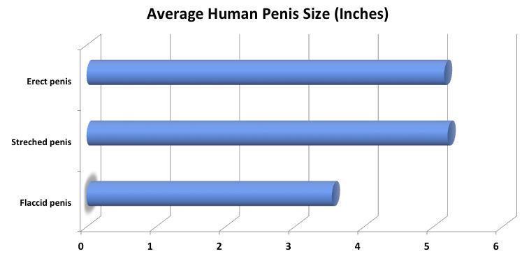 általában a pénisz kicsi
