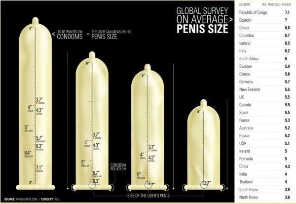 Egyetlen grafikon megmutatja, mekkorák a péniszek a világ körül | Az online férfimagazin