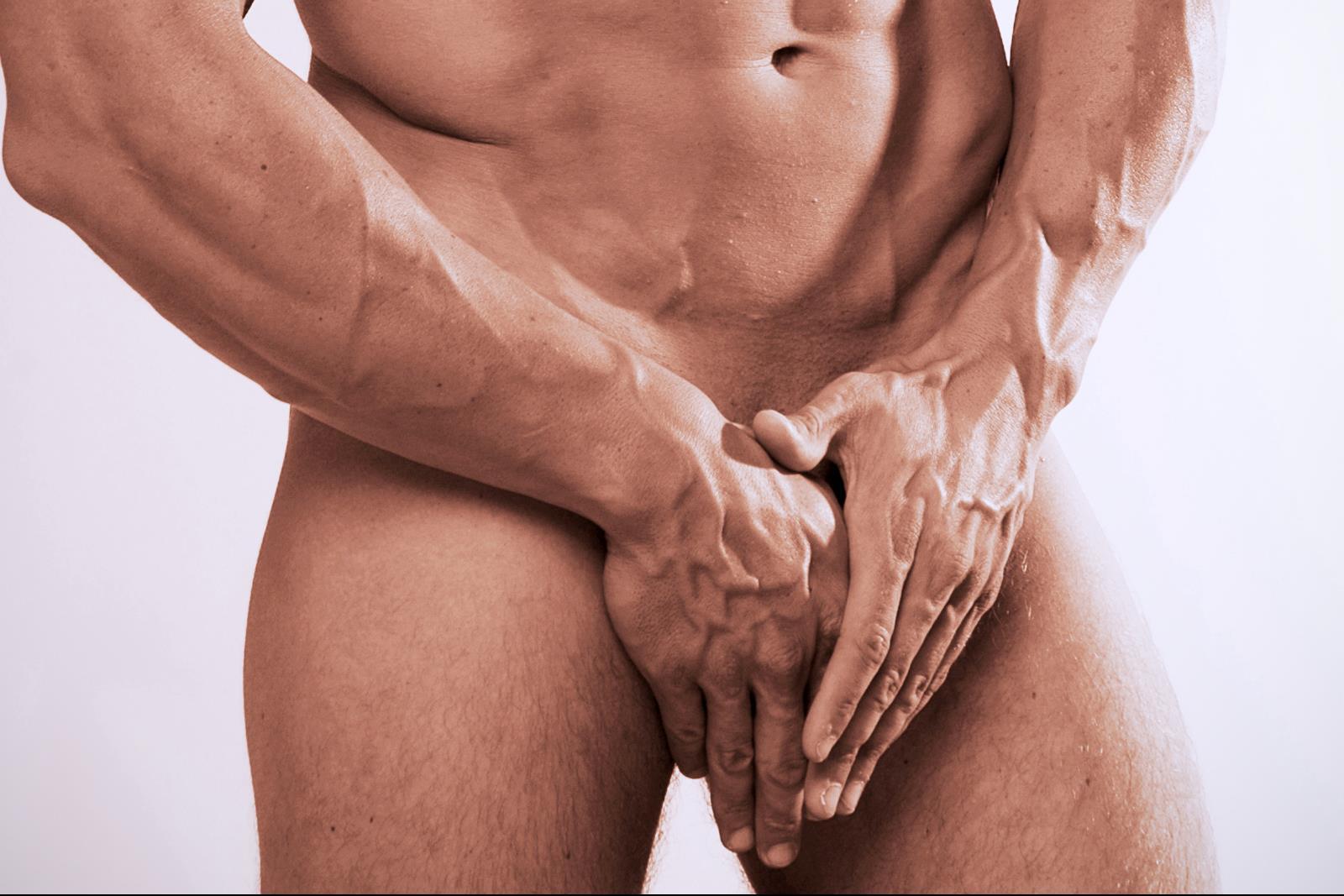 nemi szervek és péniszek