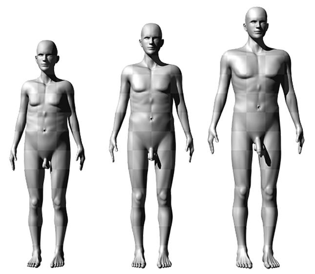 pénisz hosszúságú férfiak nőknek