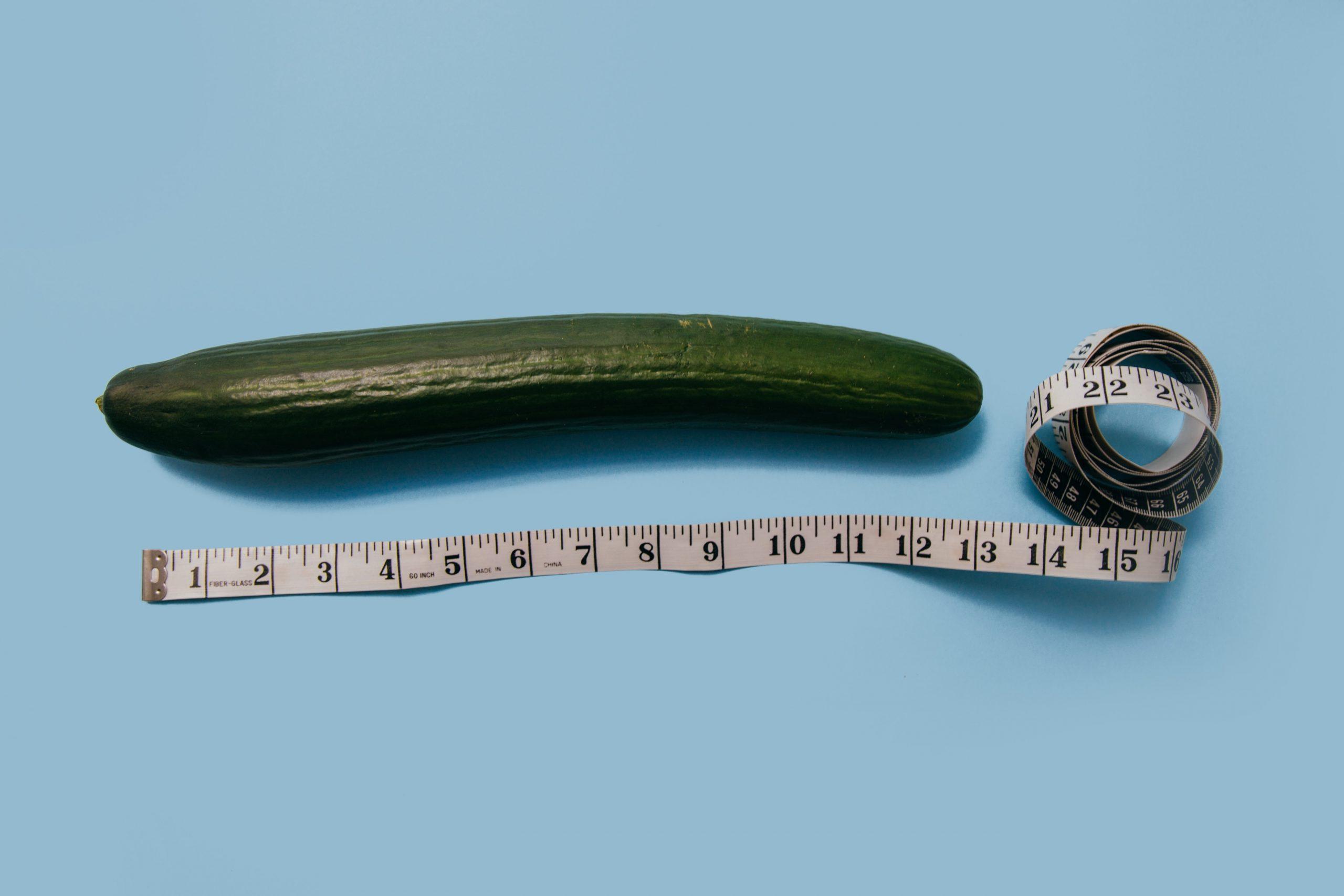 az erekciós állapotok legkisebb tagja hogyan lehet tudni, melyik pénisz